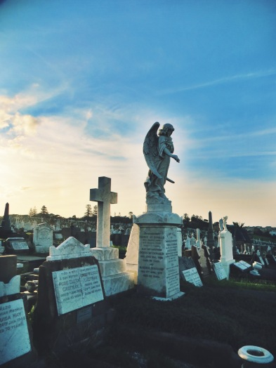 Waverly Cemetery, between Bondi and Coogee